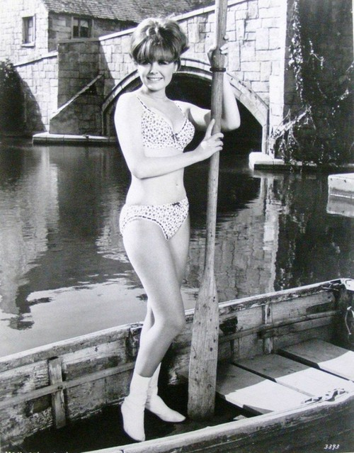 Image result for images, deborah walley, bikini
