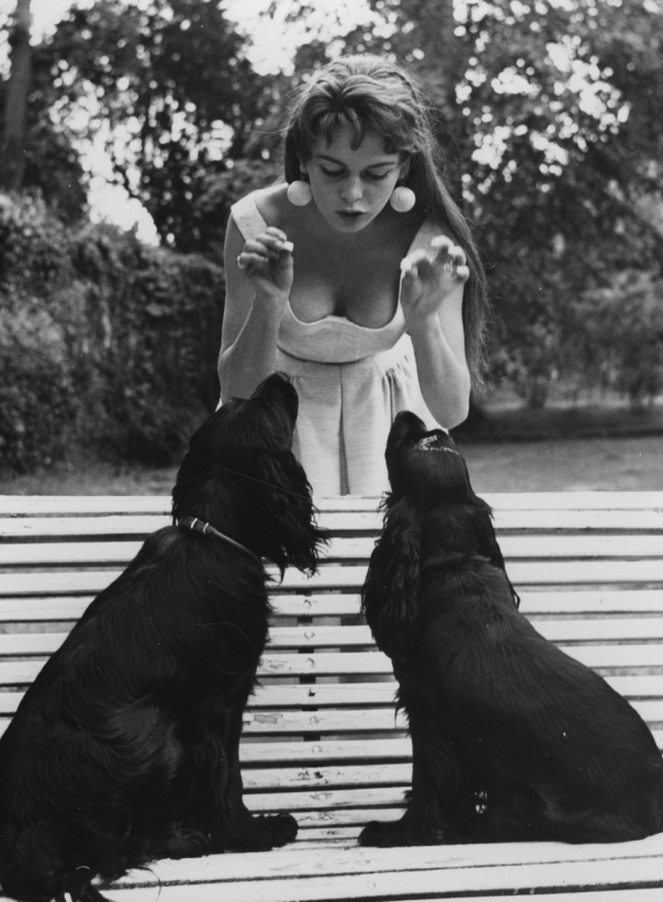 brigitte-bardot-and-her-two-dogs