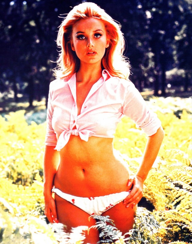 barbara bouchet flowers