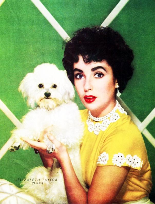 Elizabeth Taylor poodle postcard