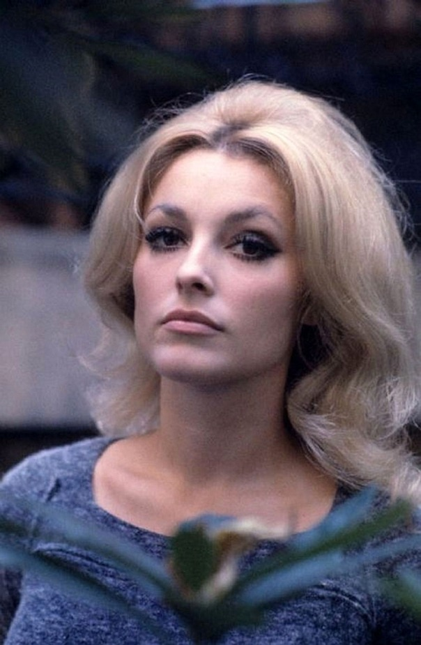 1943 sharon tate blue