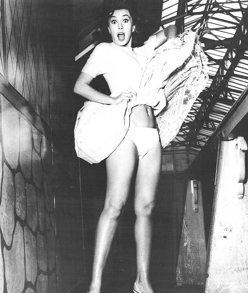 Barbara eden in panties remarkable, very