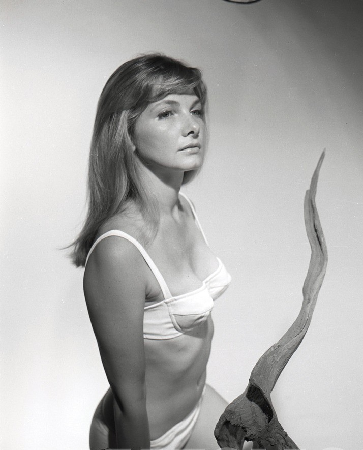 barbara billingsley pin up other pin up girls news celebrity