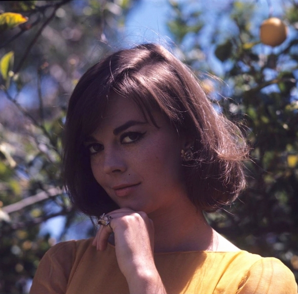 natalie wood orchard