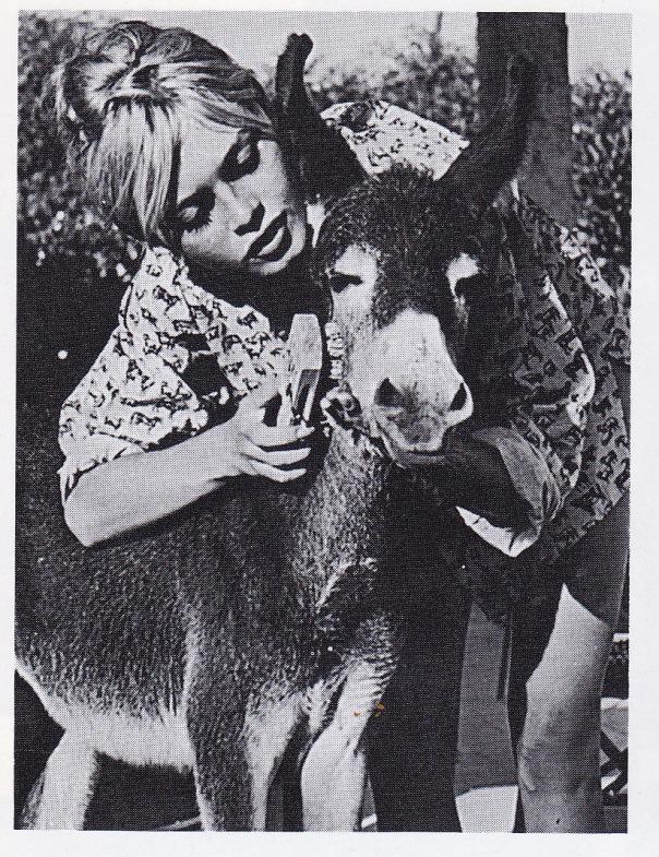 Brigitte Bardot donkey