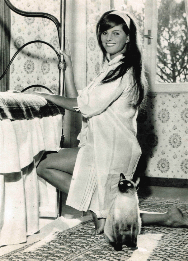 Claudia Cardinale cat
