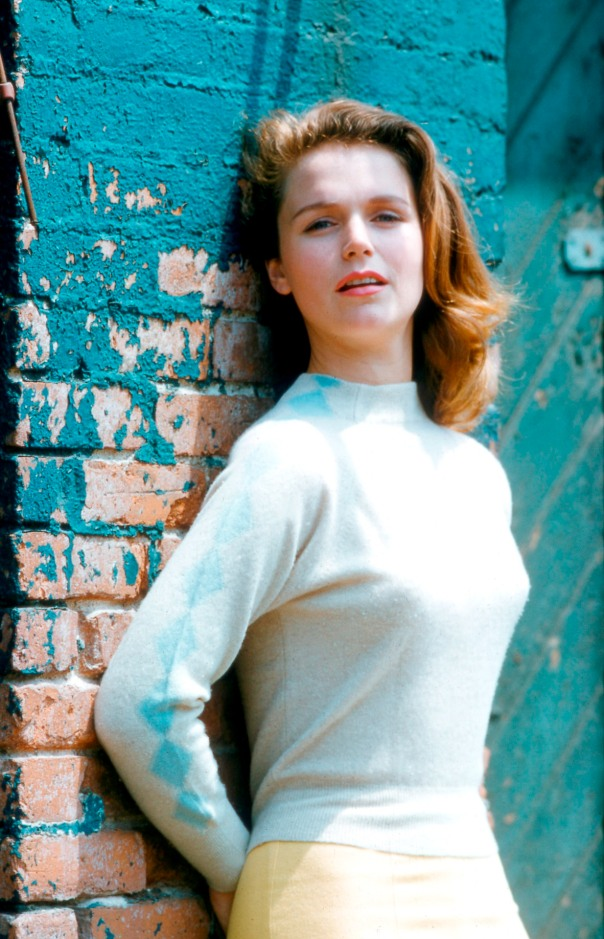 Lee Remick wall