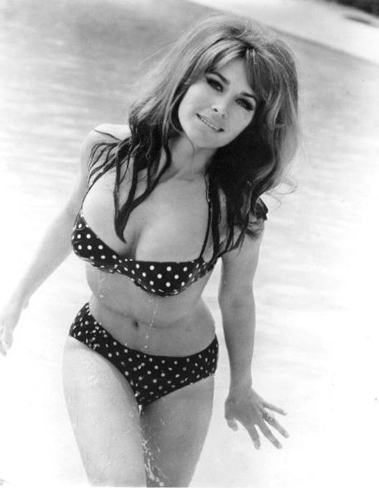 MICHELE CAREY IN THE 1960S SUPER SEXY 5X7 BUSTY BIKINI PHOTO