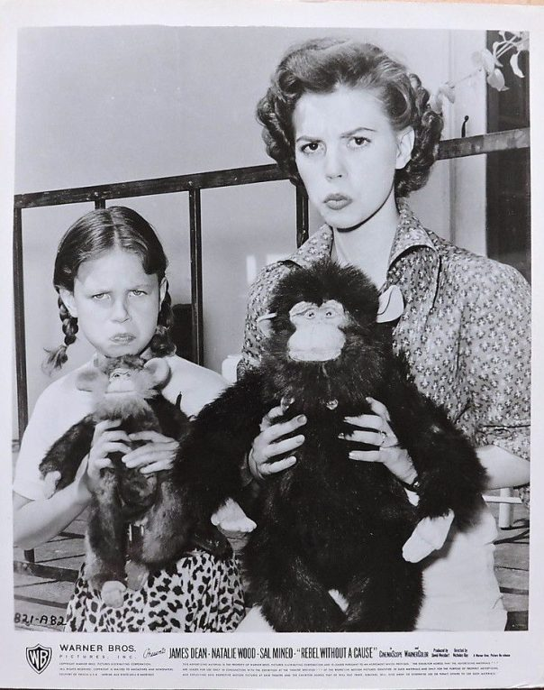 Natalie and Lana Wood with toy monkeys candid photo 1955 Rebel Without a Cause