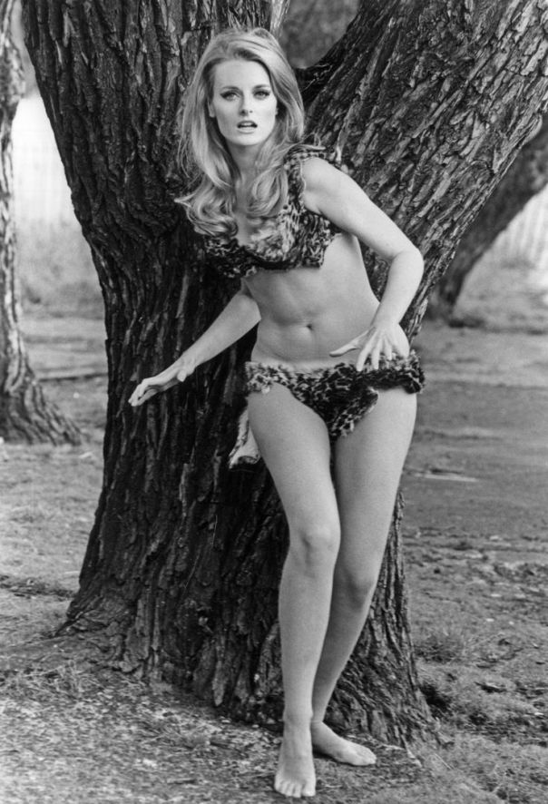 celeste yarnall the face of eve-1