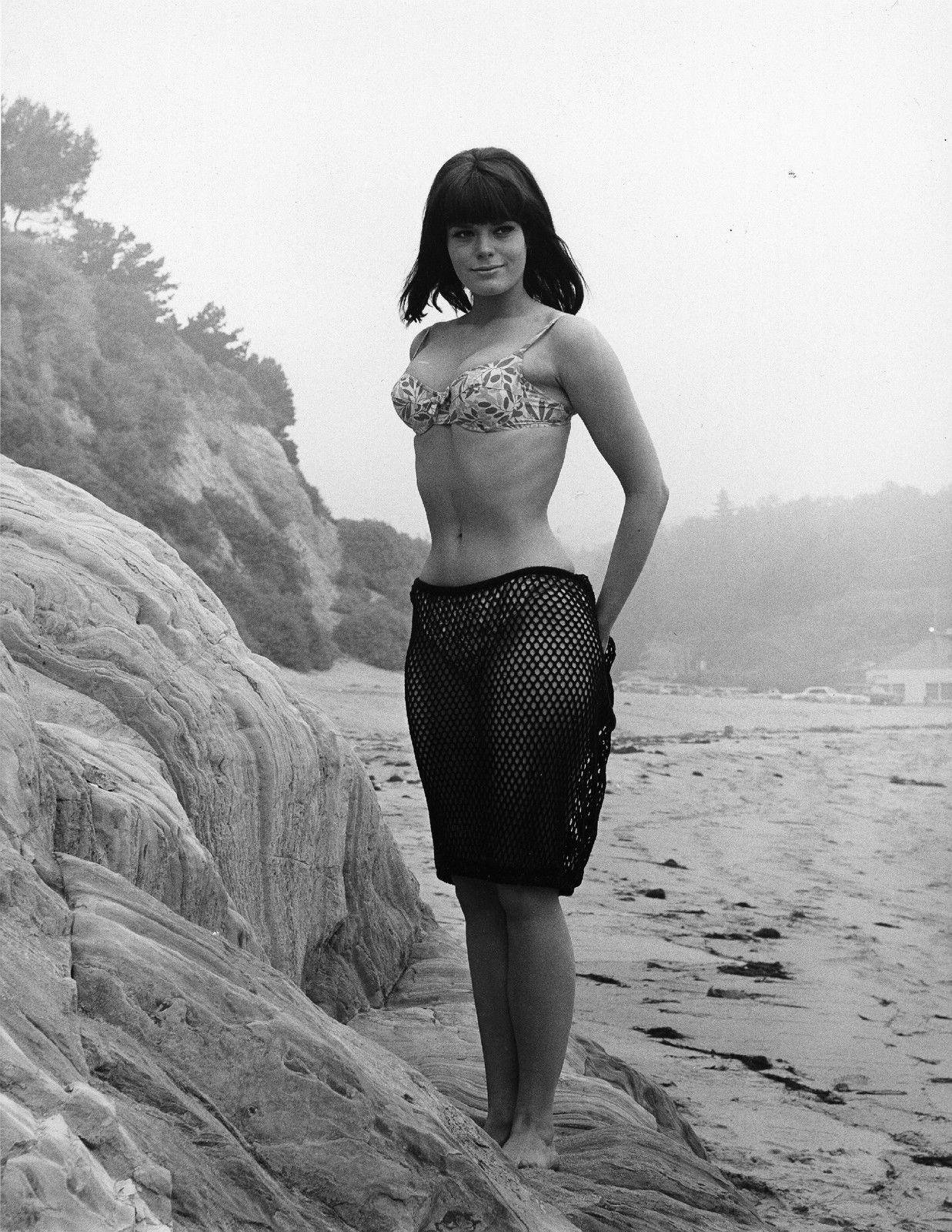 Carol Wayne Nude Photos Pretty nina wayne in a bikini and fishnet | 24 femmes per second