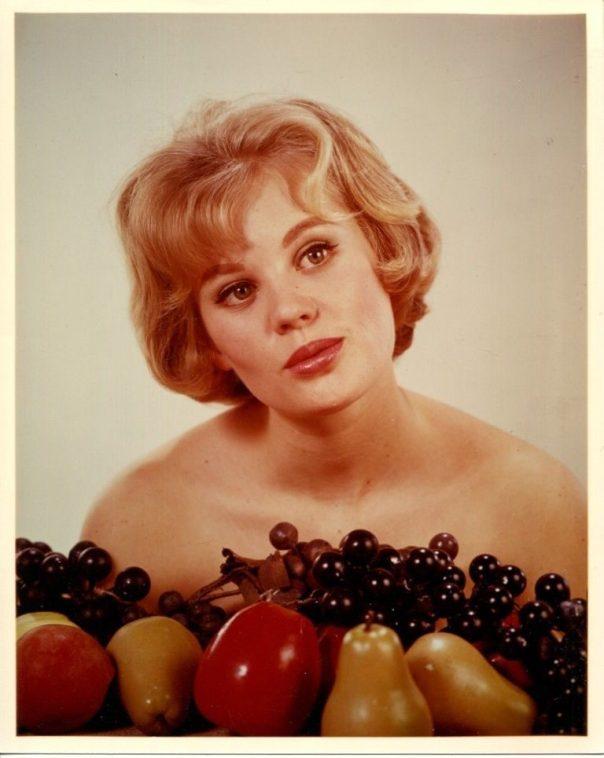 PAMELA AUSTIN sexy glamour headshot Publicity Press PHOTO '60s Starlet ====