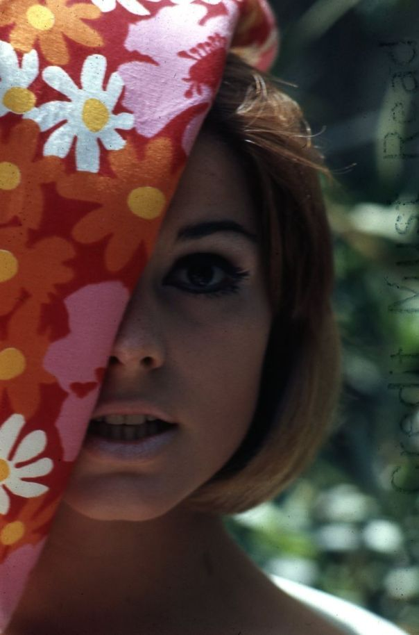 susan-saint-james-1966-coy-close-up-original-slide-transparency-kate-allie-gp