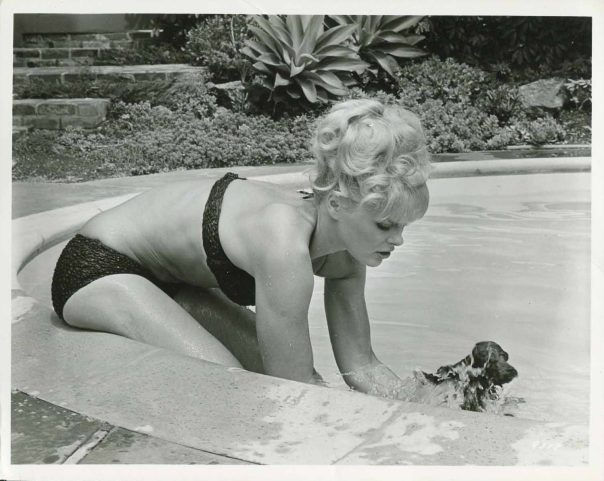 elke-sommer-dog-bathingsuit