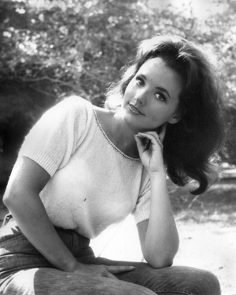 Are not dawn wells gilligan s island nude not